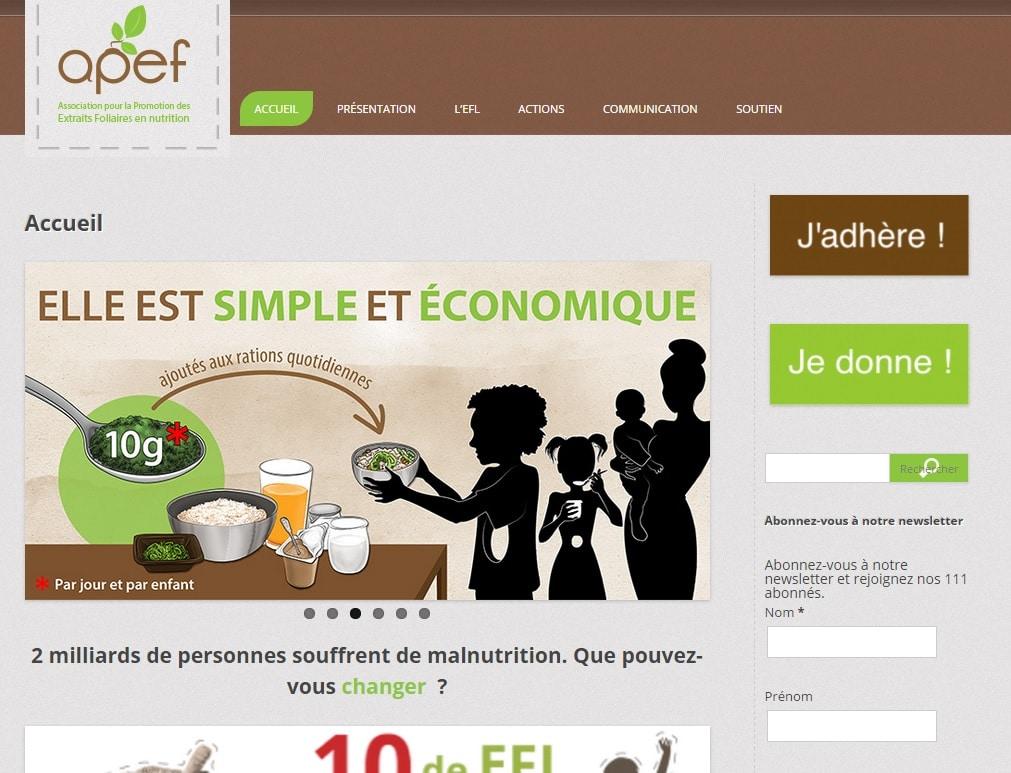 Site web de l'association APEF qui utilise le plugin WordPress Q-Translate